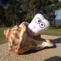 toofus shell